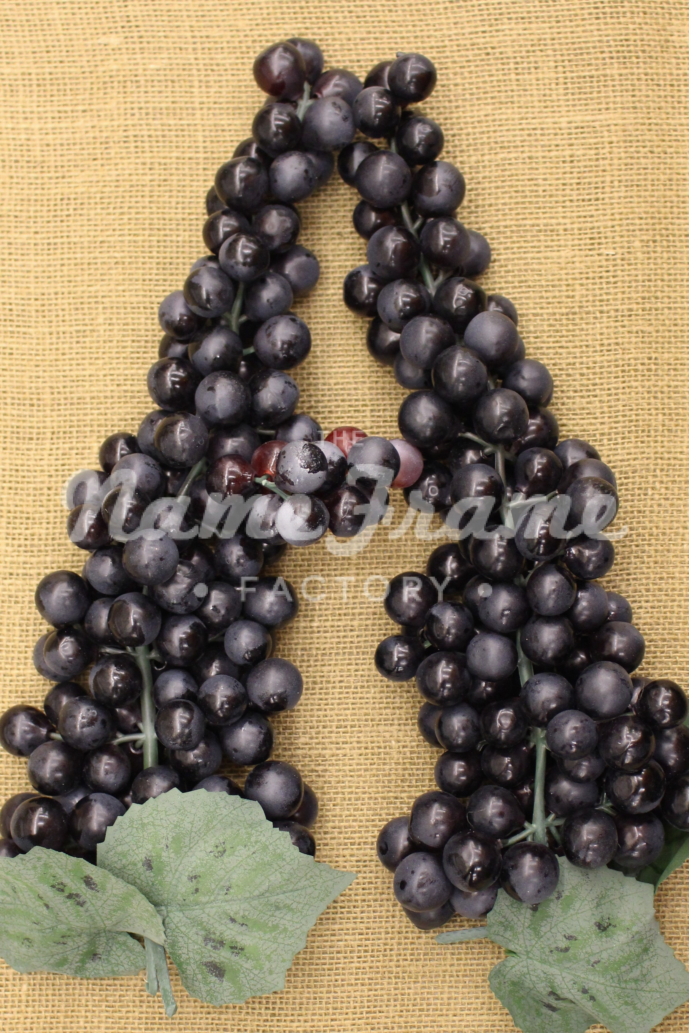 Amazing grapes wine store coupons